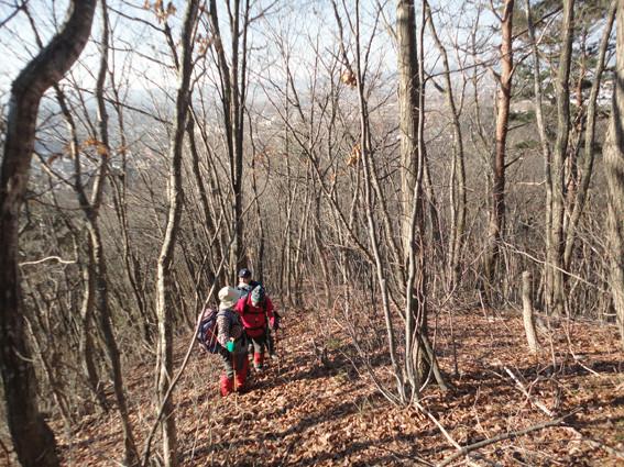 4+. 落葉で見通し良い山頂までの道(2015.12.24)