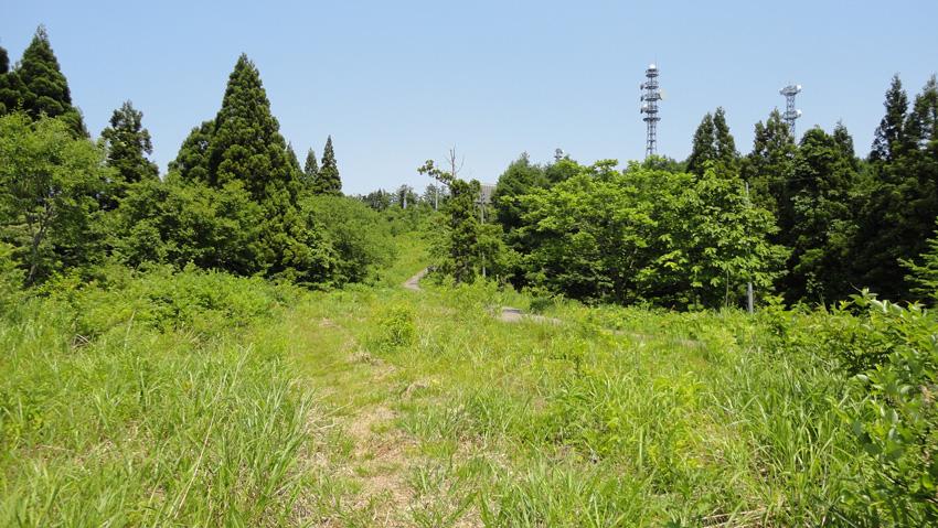 12.  ガイドテープ途切れない「森林コース」を抜けて山頂のアンテナ群目指す