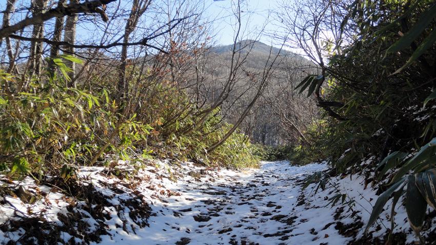 「鍋森急斜面」から石神神社への登山道も広い
