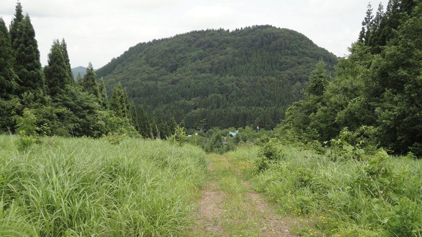 8.  切れ間無い「マーキングテープ」の広い登山道から、振り返ると「大高森」369.3m