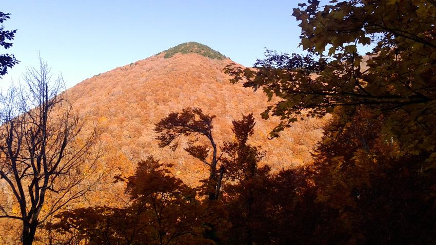 4.  登山道の樹間からは鮮やかな紅葉が
