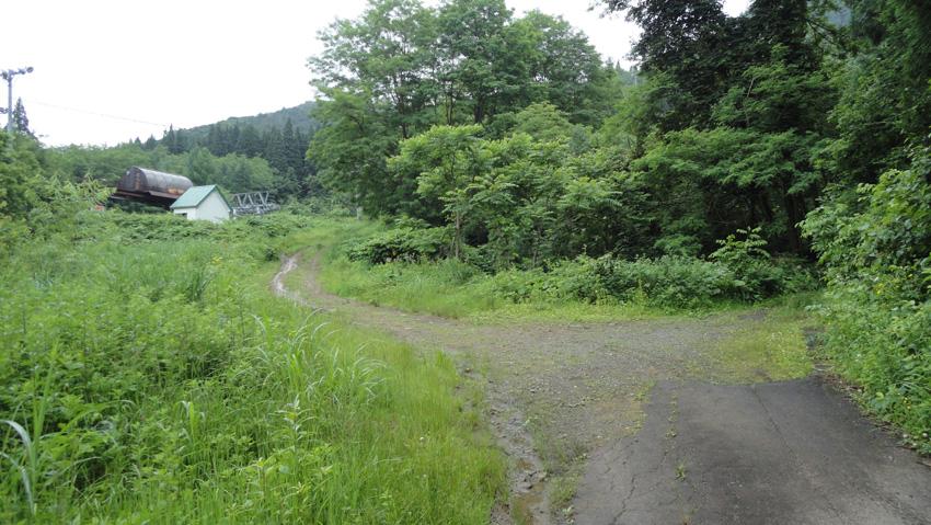 7.  舗装が切れるY字路を左に。「一本アカマツ」から340mほどの「リフト塔」前小路に駐車