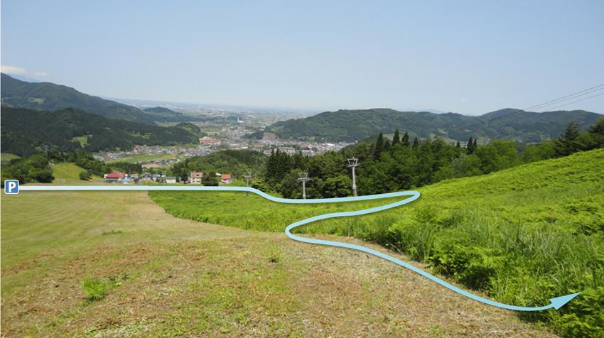 3.  登山道は一旦刈り払いされたヤブ地を通る