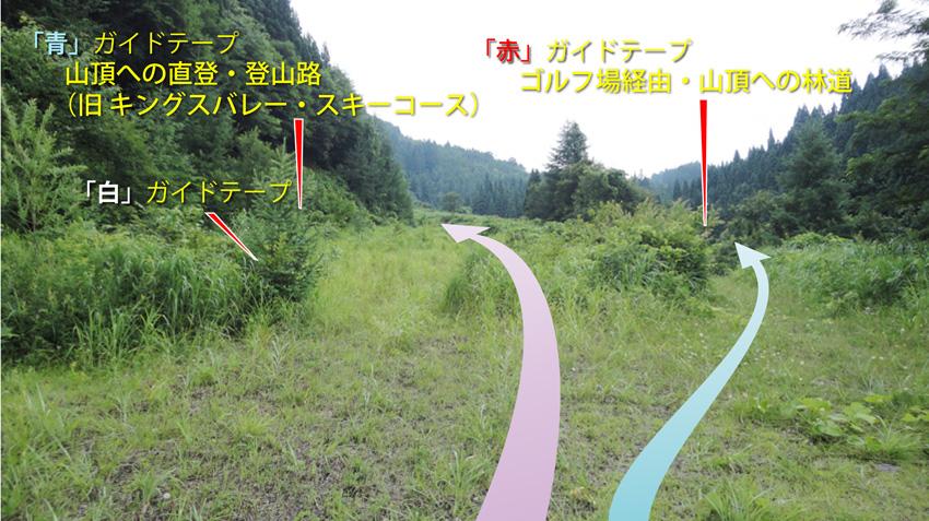 1.  最初のY字分岐( L型カーブから300m地点)