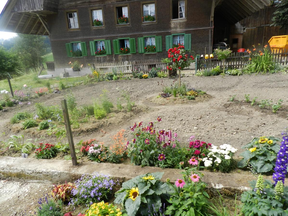 neben Gemüse und Kräutern immer wieder Blumen