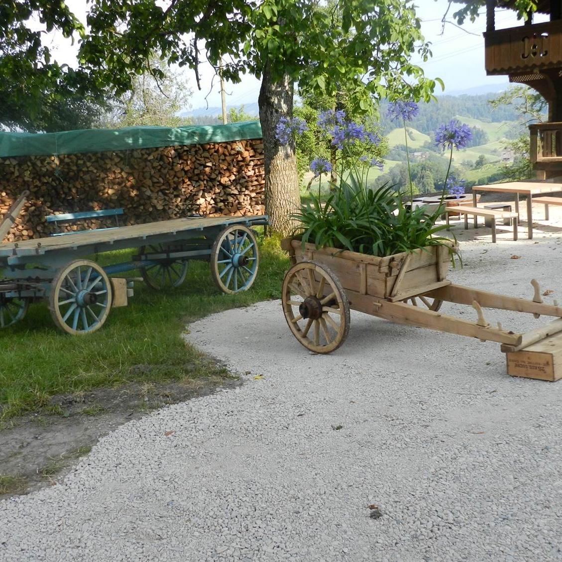 die alten Wagen wirken sehr dekorativ
