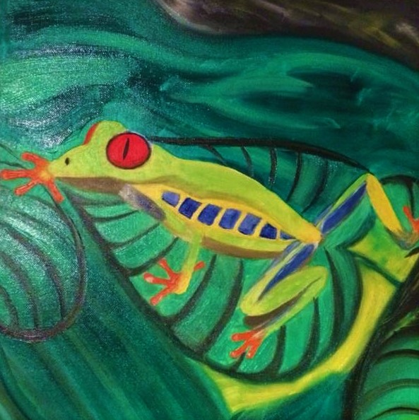 NR.3 Red-eyed tree frog