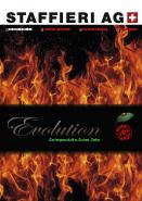 Staffieri Cheminee Evolution Serienprodukte swiss Oeko Feuer