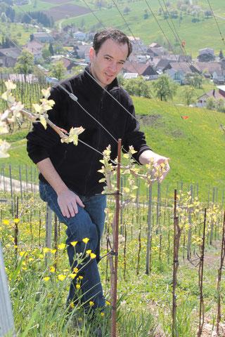 Oliver Kramer, Präsident Weinbaugenossenschaft Wiler Trotte, Wil