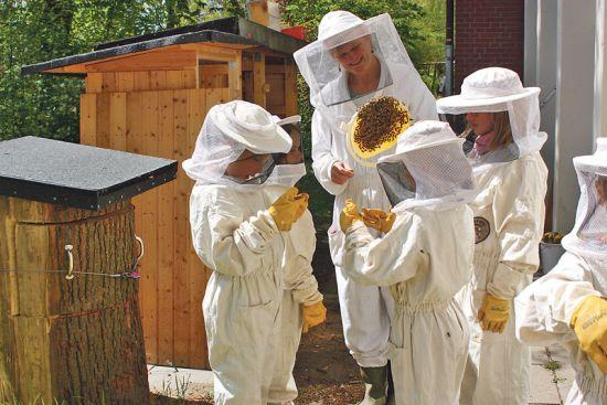 Mit ungebrochener Leidenschaft bringt Undine Westphal Bergstedter Grundschulkindern das Imkerhandwerk bei.