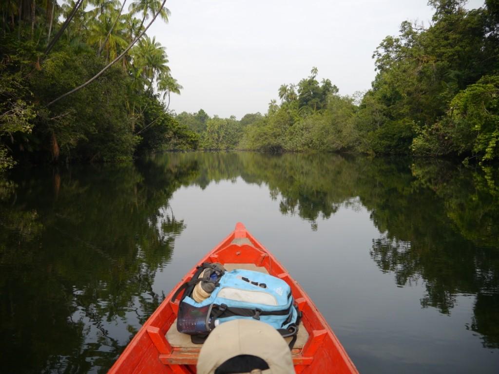 Vom River in den Regenwald