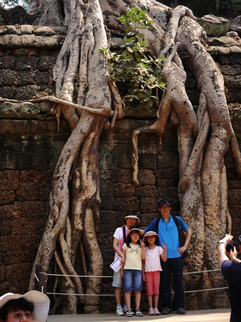 Ruinen von Tempelanlage Dschungel Ankor Wat