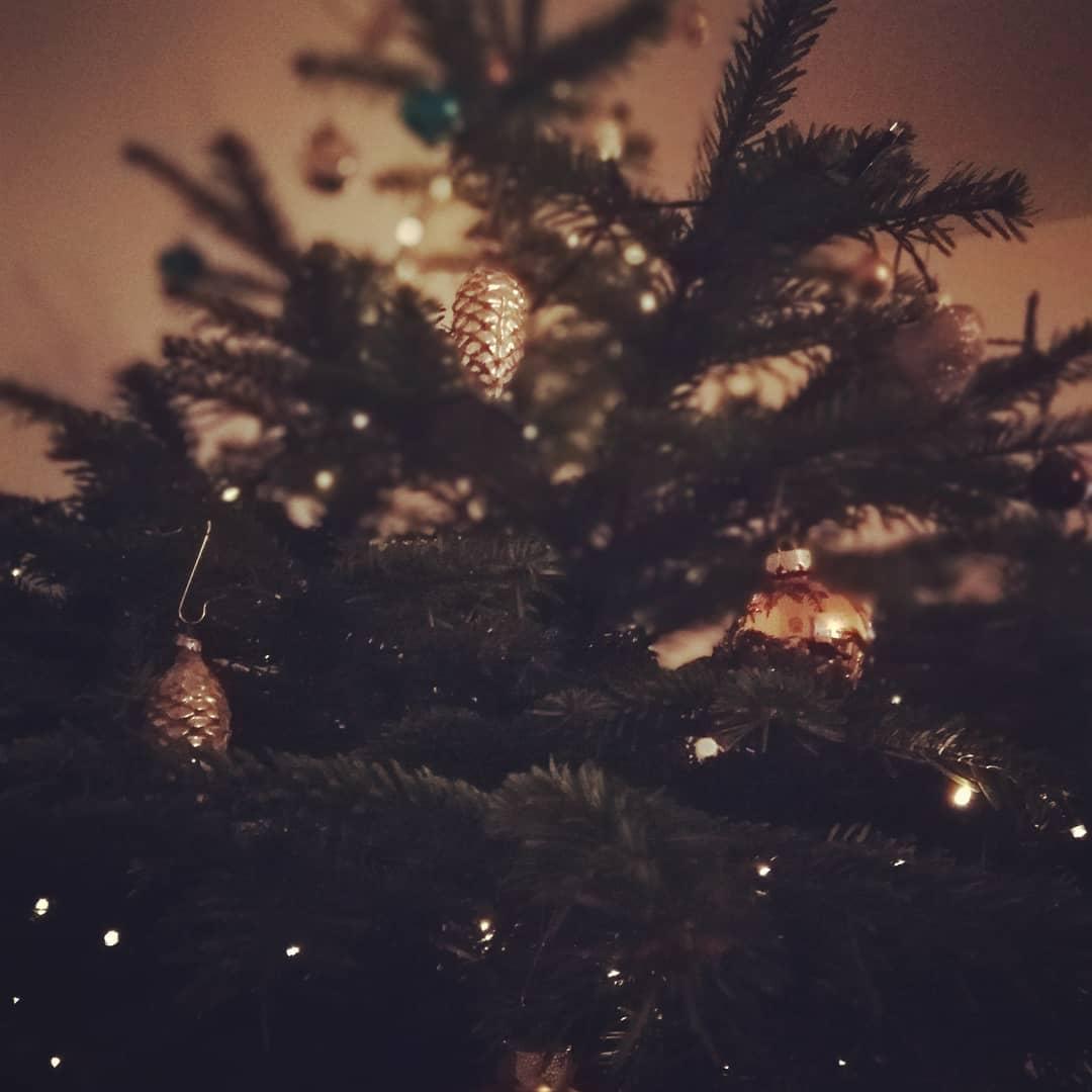 Weihnachtsbaumabfuhr 2021