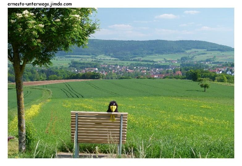 Blick auf Schneppenbach