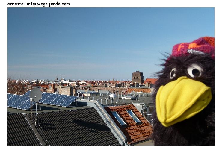 Über den Dächern muss die Freiheit wohl grenzenlos sein.