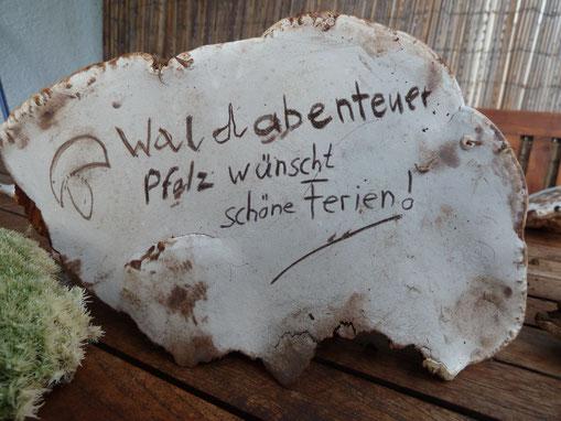 Malerpilz (Flacher Lackporling)
