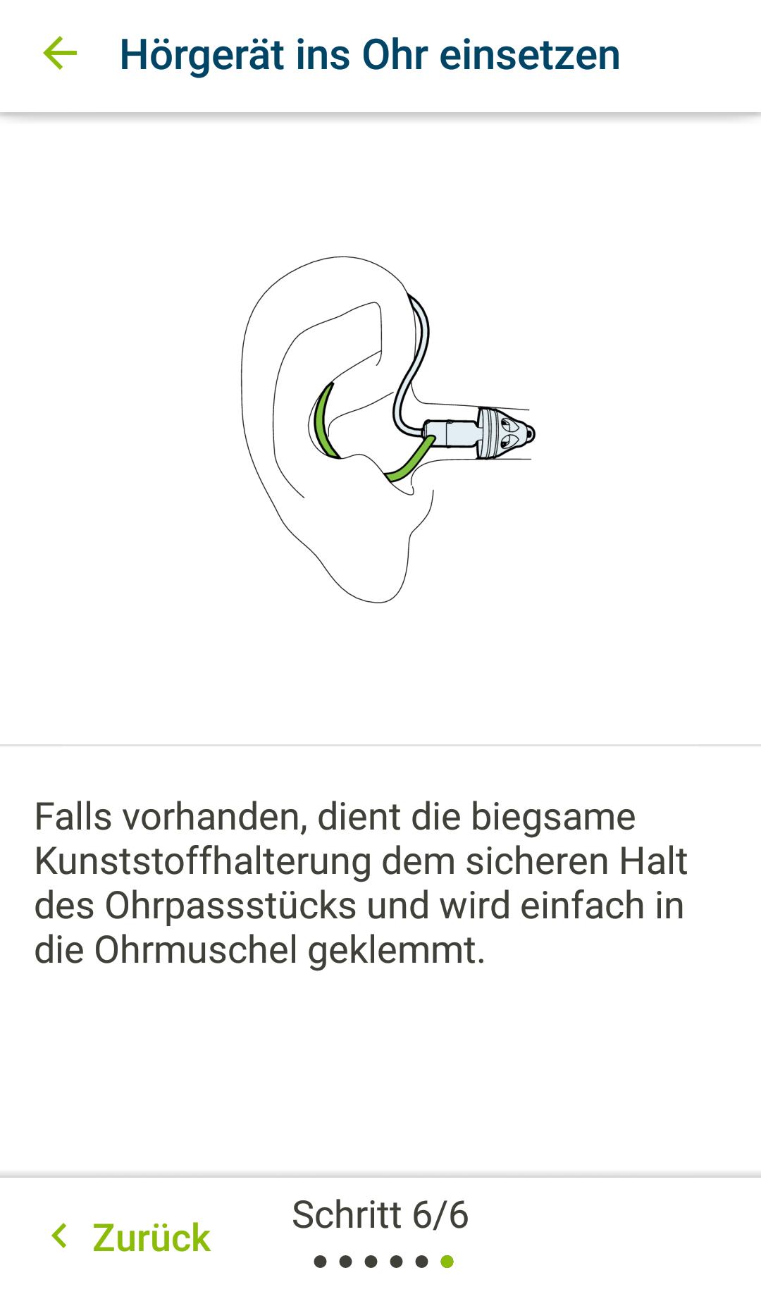 Einsetzen der Hörsysteme