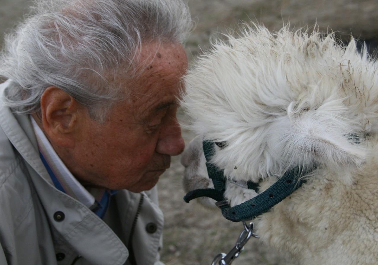 Zuneigung spüren, die meisten alten Menschen haben schon lange keinen körperlichen Kontakt zu Lebewesen mehr