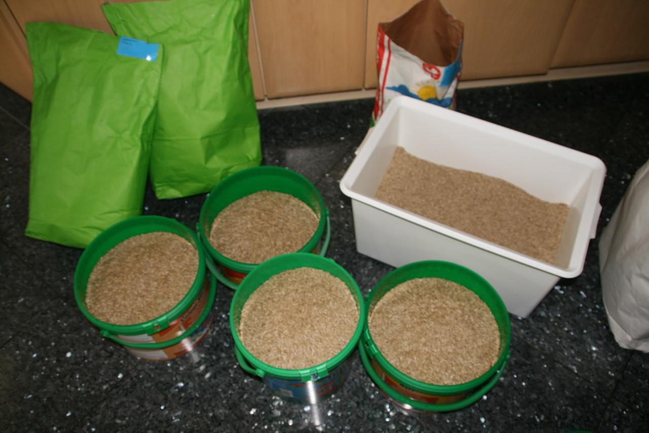 5 verschiedene leckere Grassamen, ideal für Alpakas