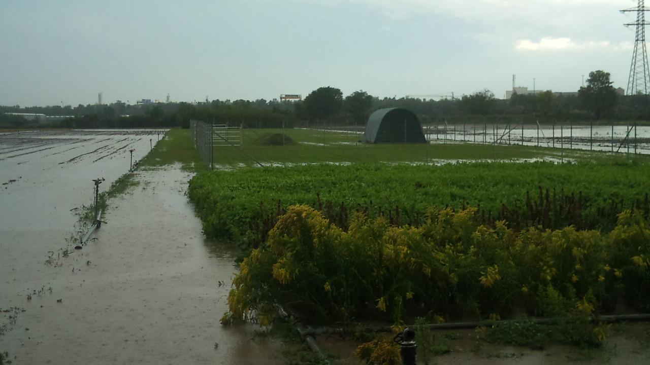 erste Durchhalteprobe nach schwerem Gewitter. Zelt hats überlebt