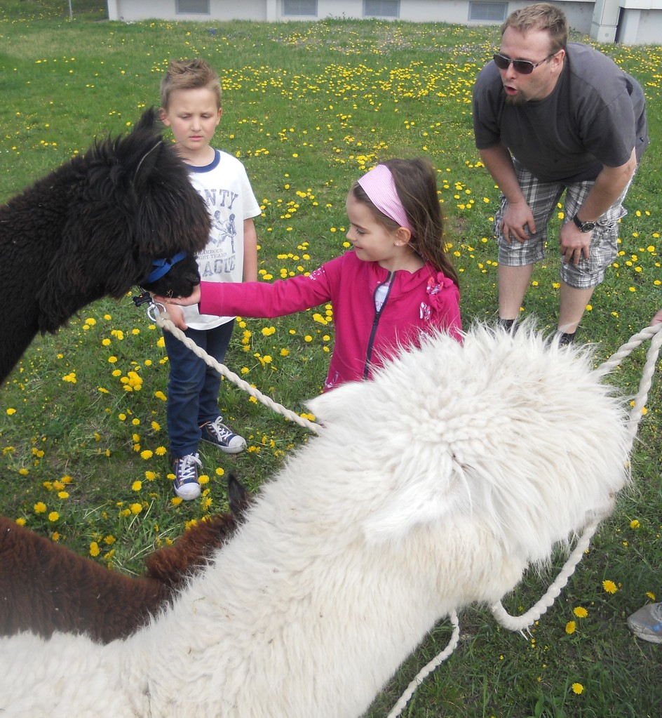 Schnell lernen die Kinder mit den Tieren umzugehen