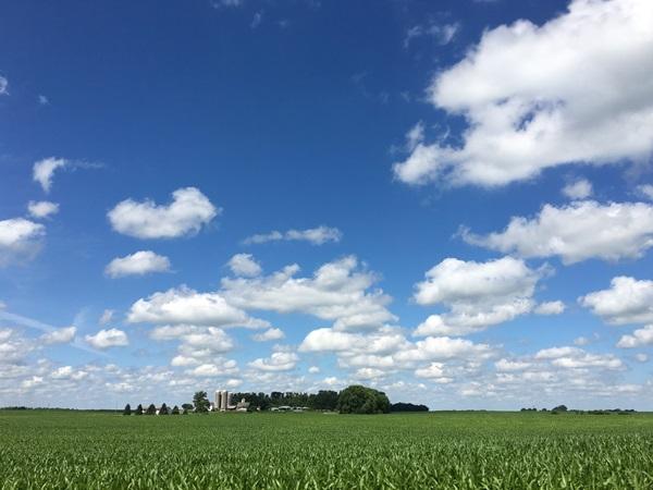 視界いっぱいに広がる農場(ミネソタ州)