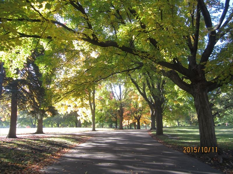墓地公園(ミネソタ州ローズビル市)