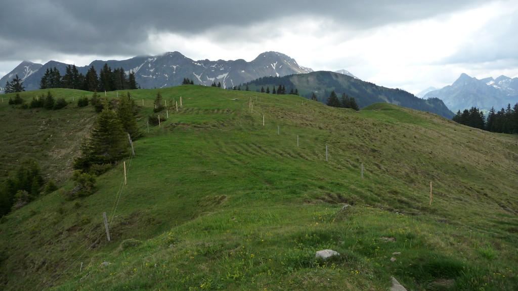 alle drei Gipfel - hinten Kaiseregg - in der Mitte Hohmattli und vorne Ättenberg