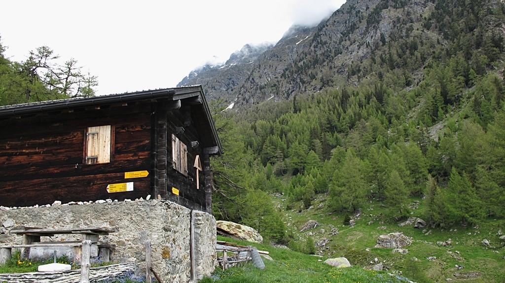 Alp Joli und der Gipfel in den Wolken