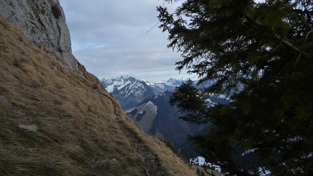 schmales Weglein am Gipfelfuss