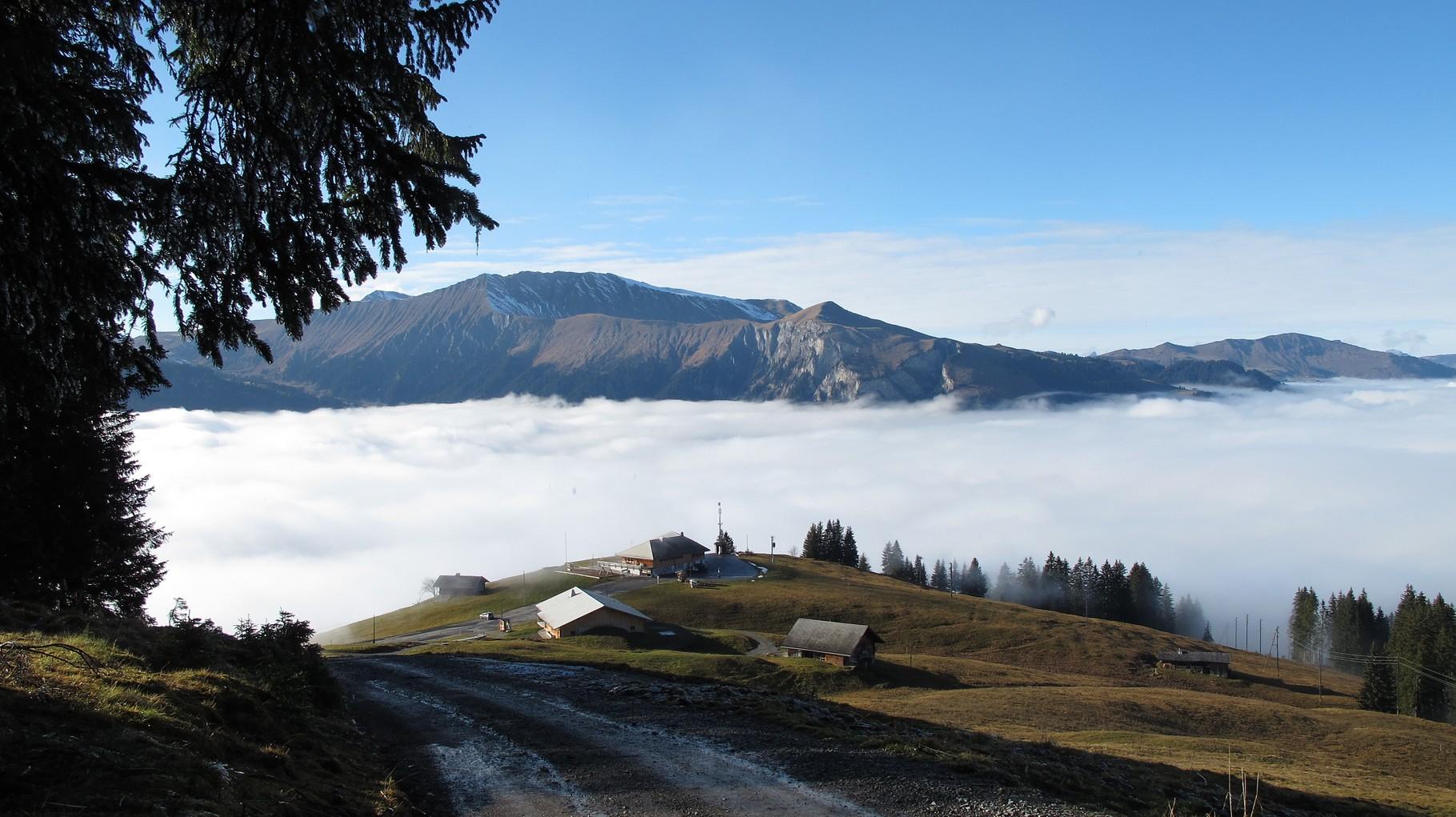 Büelberg knapp über dem Nebel