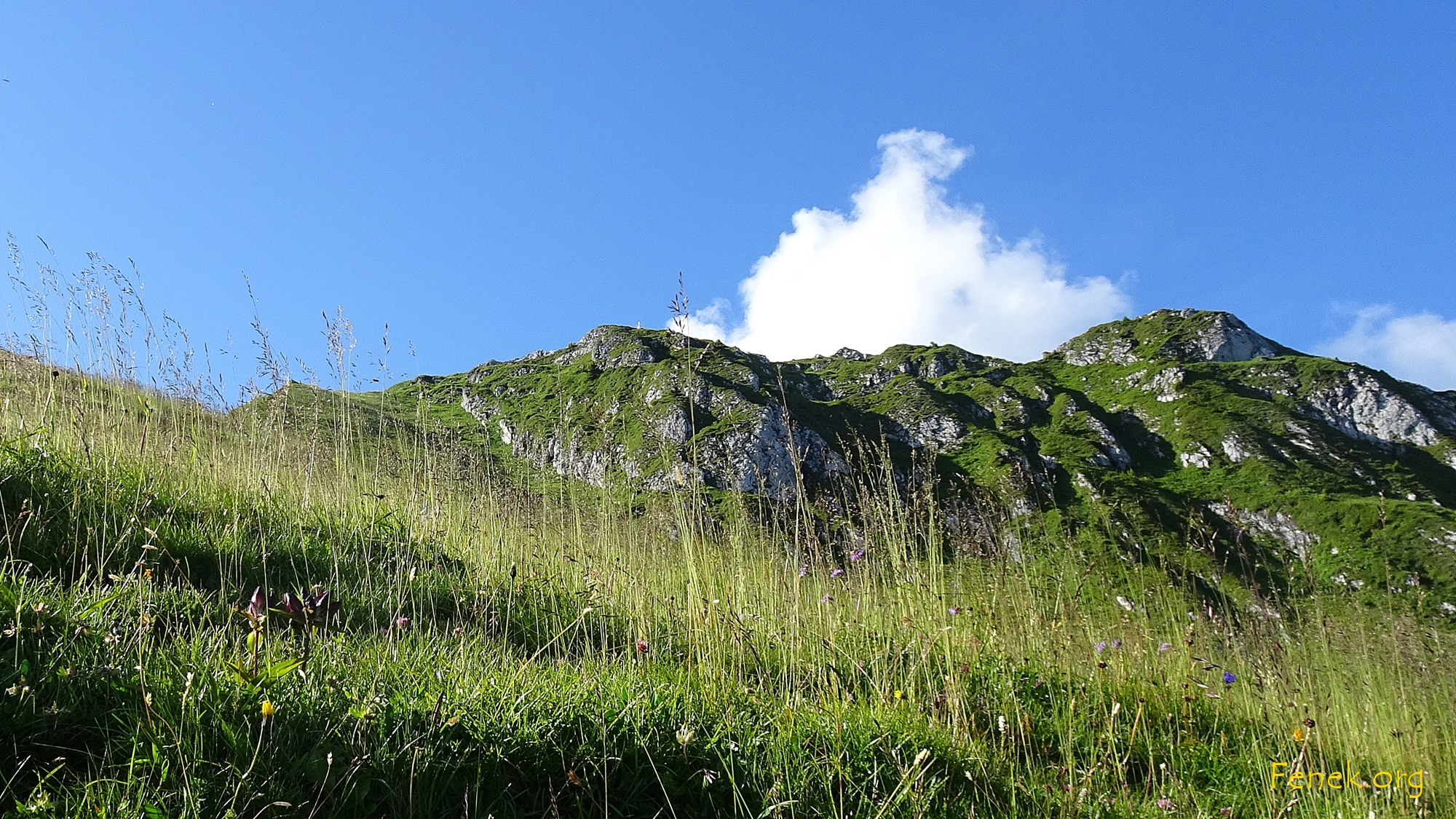 kurz unter dem Gustispitz - das Gipfelkreuz glänzt an der Sonne