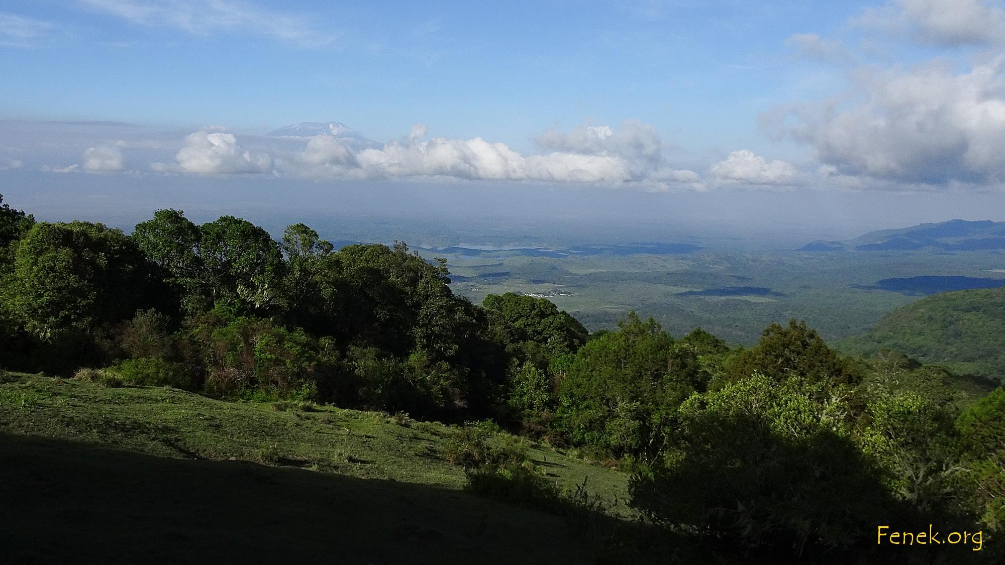 schon etwas höher sehen wir den Kilimanjaro