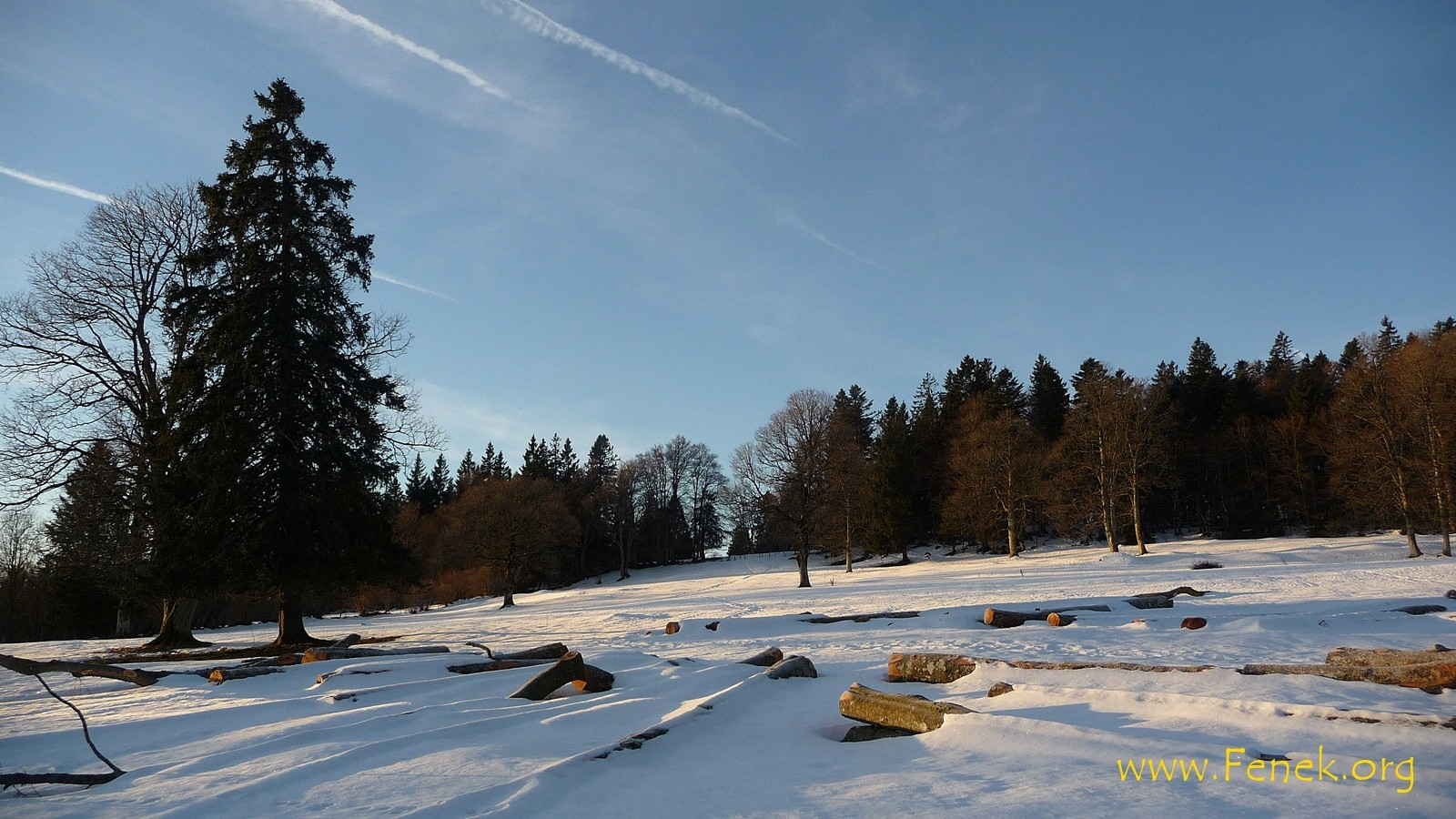 Jura Landschaft