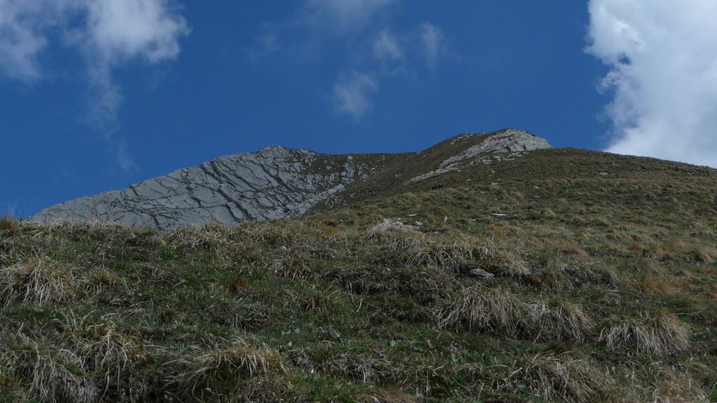 Aufstieg im steilen Gras