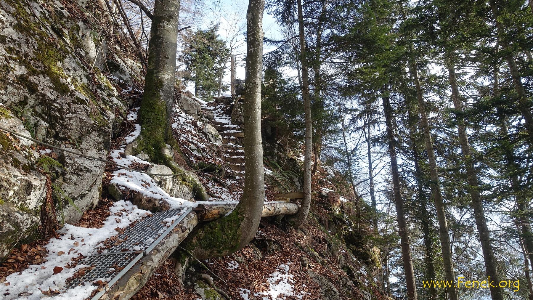 Südseitiger Abstieg - einfach