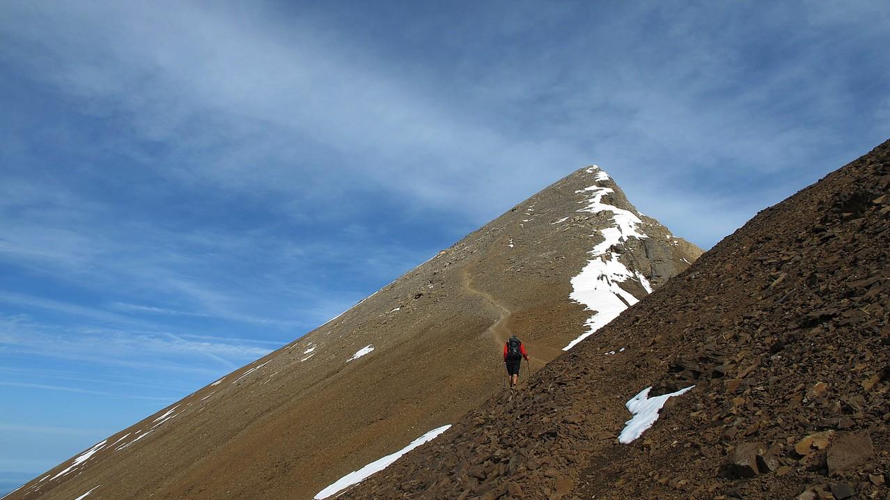 die letzten Meter zum Gipfel....