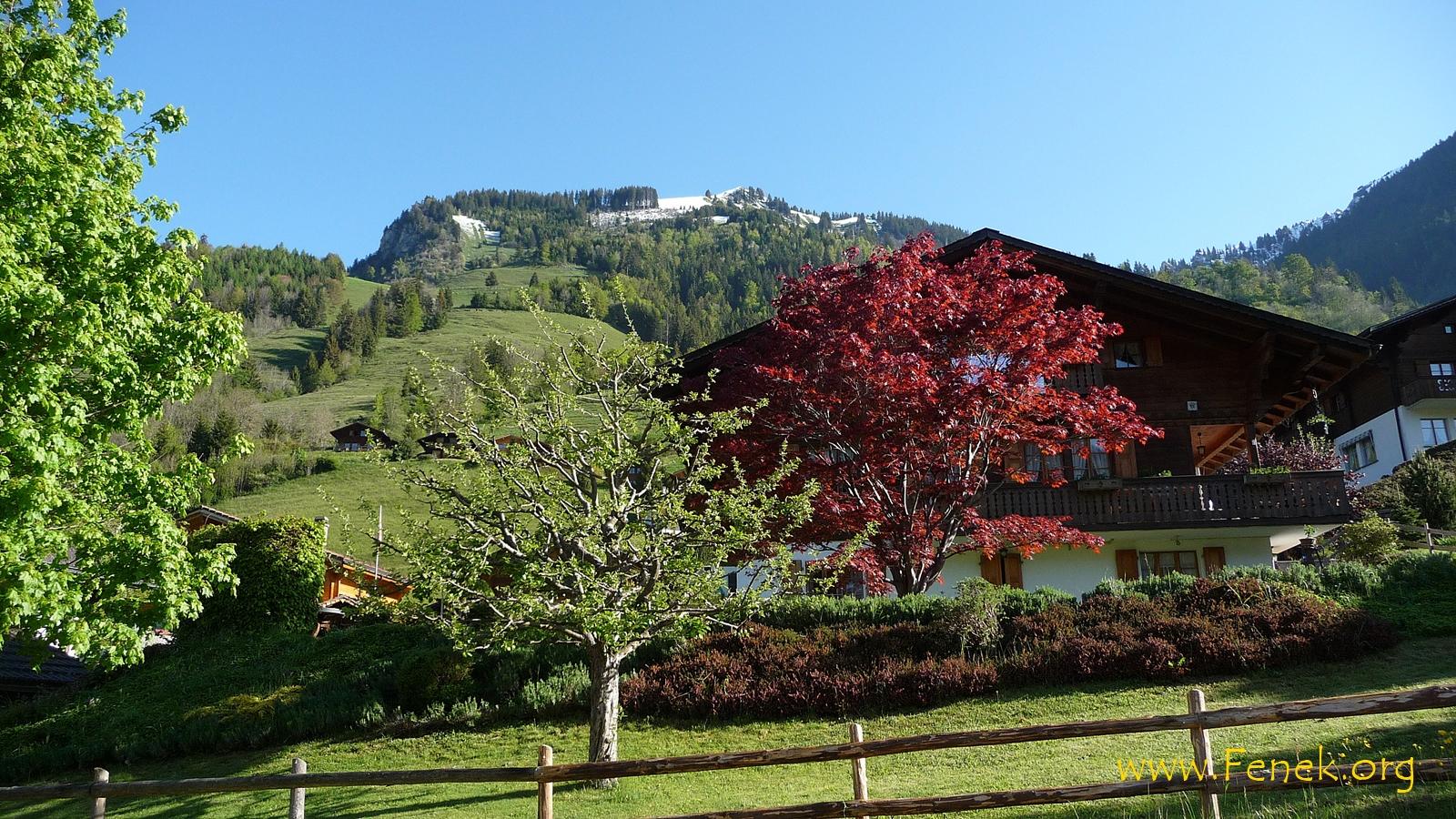 In Rossinière ist die Pointe du Chevrier zu sehen