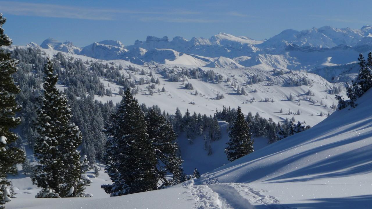 Innerschweizer Berge - Sustenhorn etc.