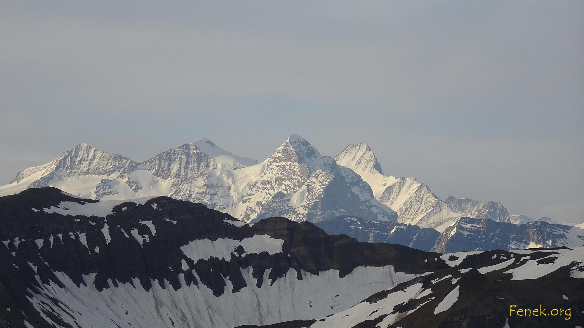 wunderschön! Dominant Schreckhorn, daneben Wetterhorn, Mittelhorn und Rosenhorn