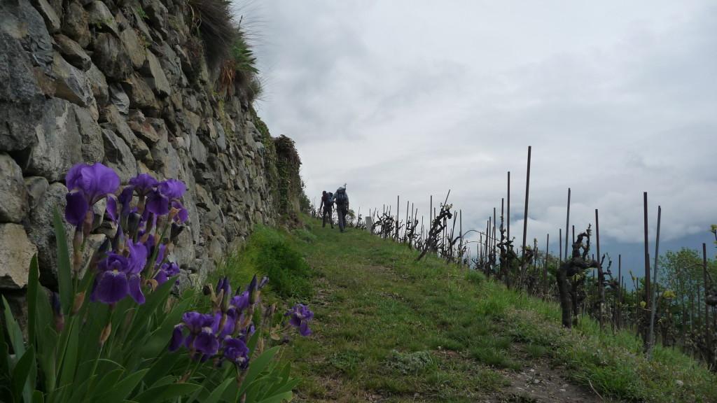 reizvoller Wanderweg