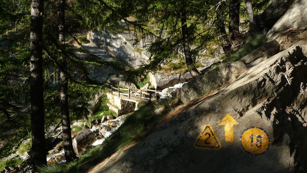 Aufstieg durch Lärchenwald - bestens markiert