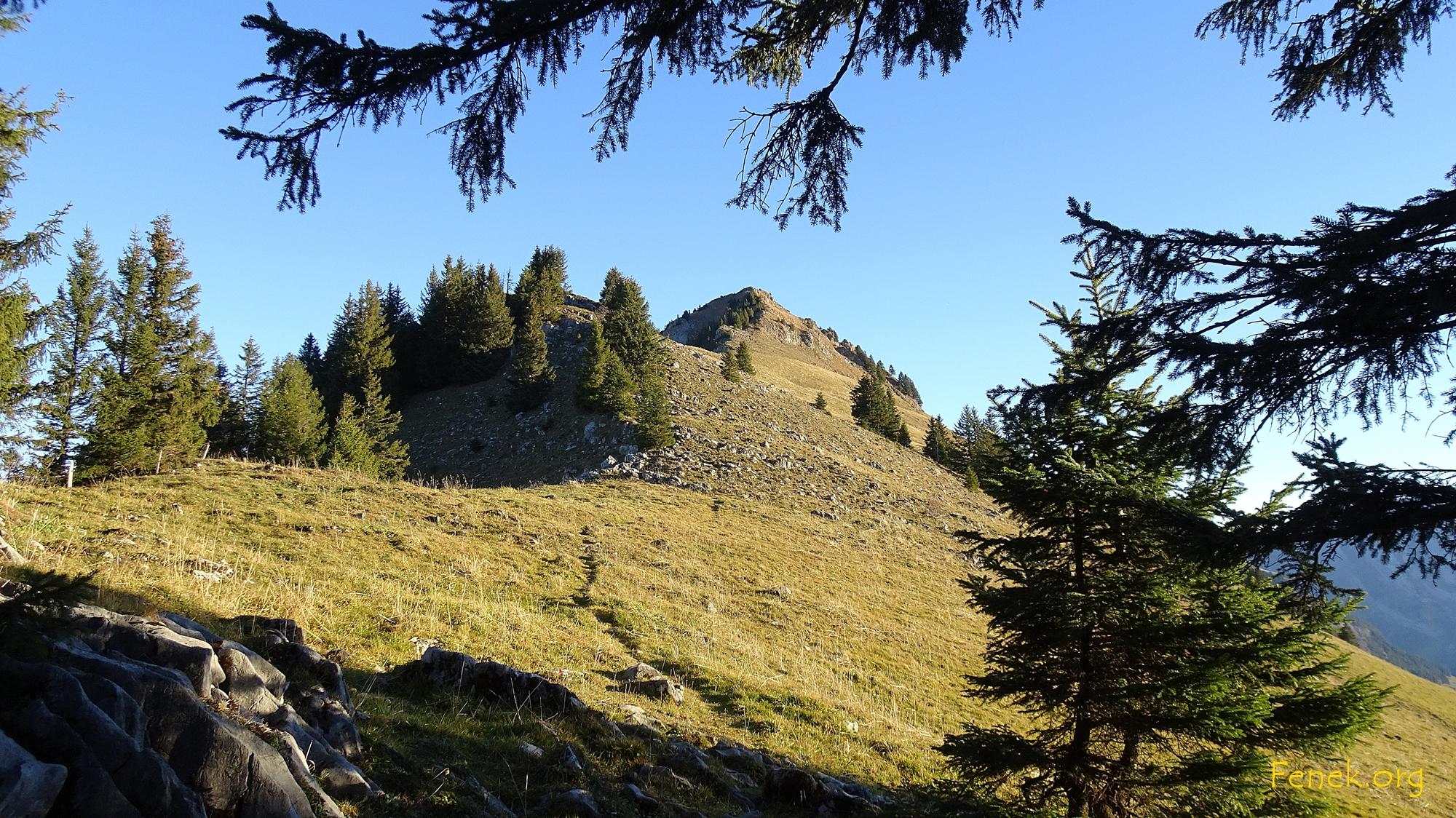 hinauf zum Neuenalpstein