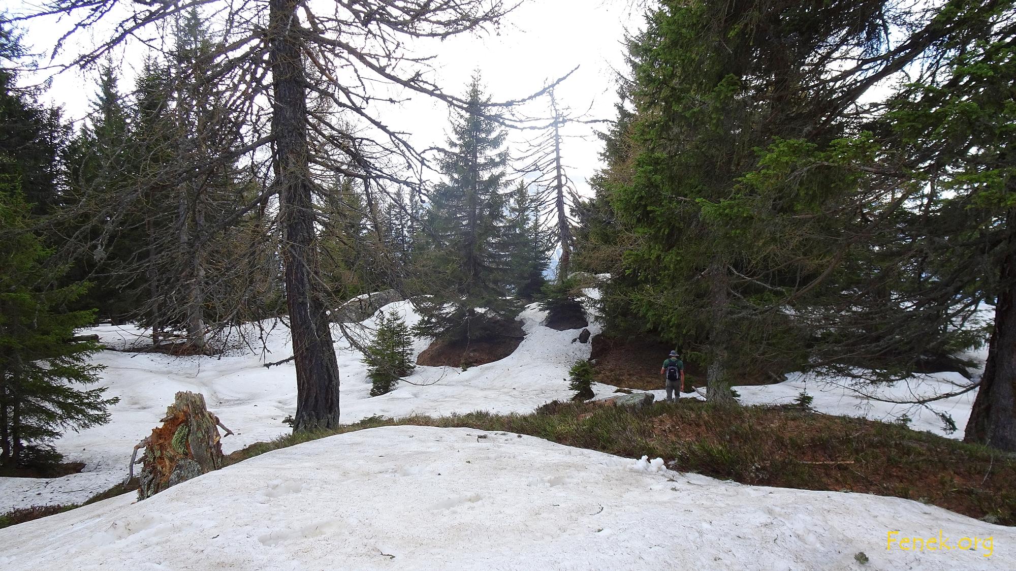 auf dem Grat im Schnee
