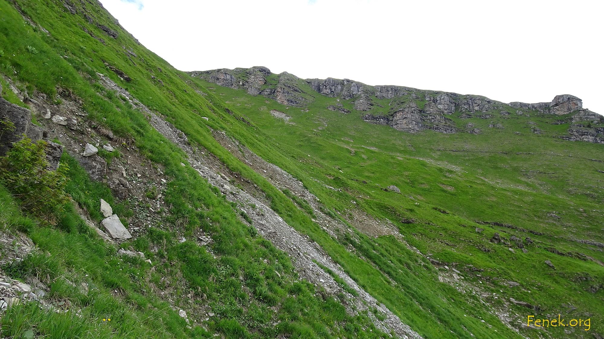 Ein Eindruck des Geländes, dazu noch nass :-(