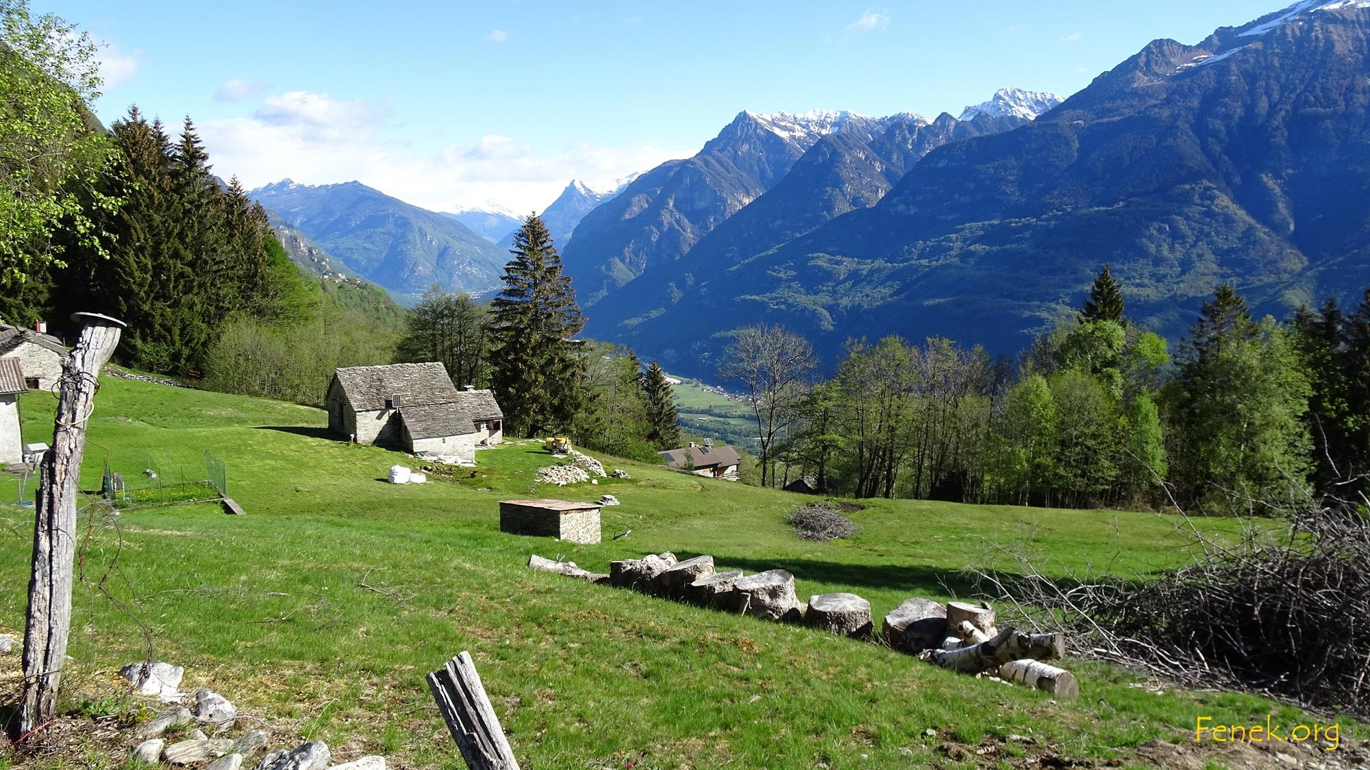 Alp Monti di Cima