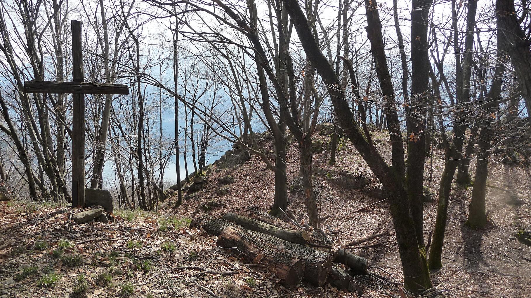 Aufstieg durch lichten Wald