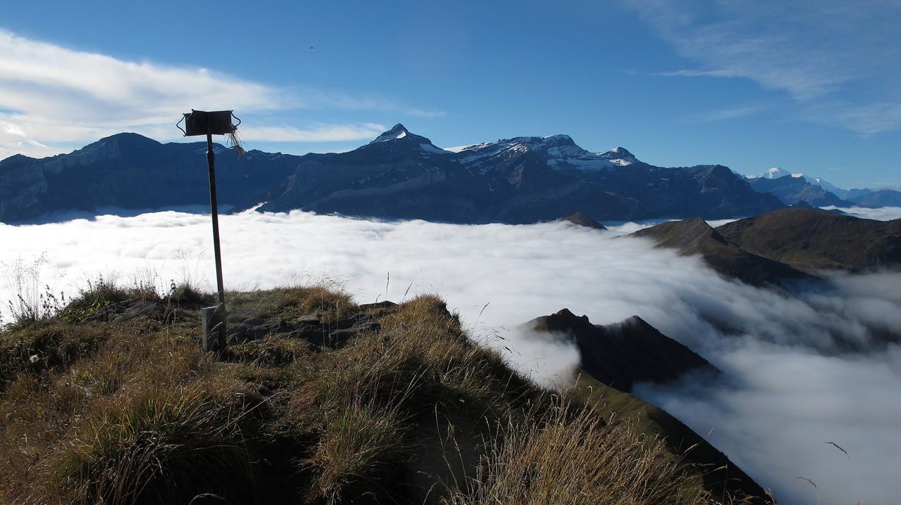 am Gipfel vom Wittenberghorn