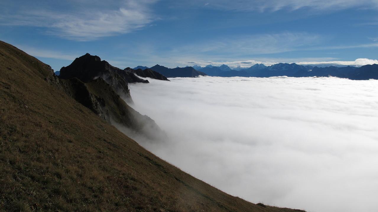 dem Nebel entflohen....