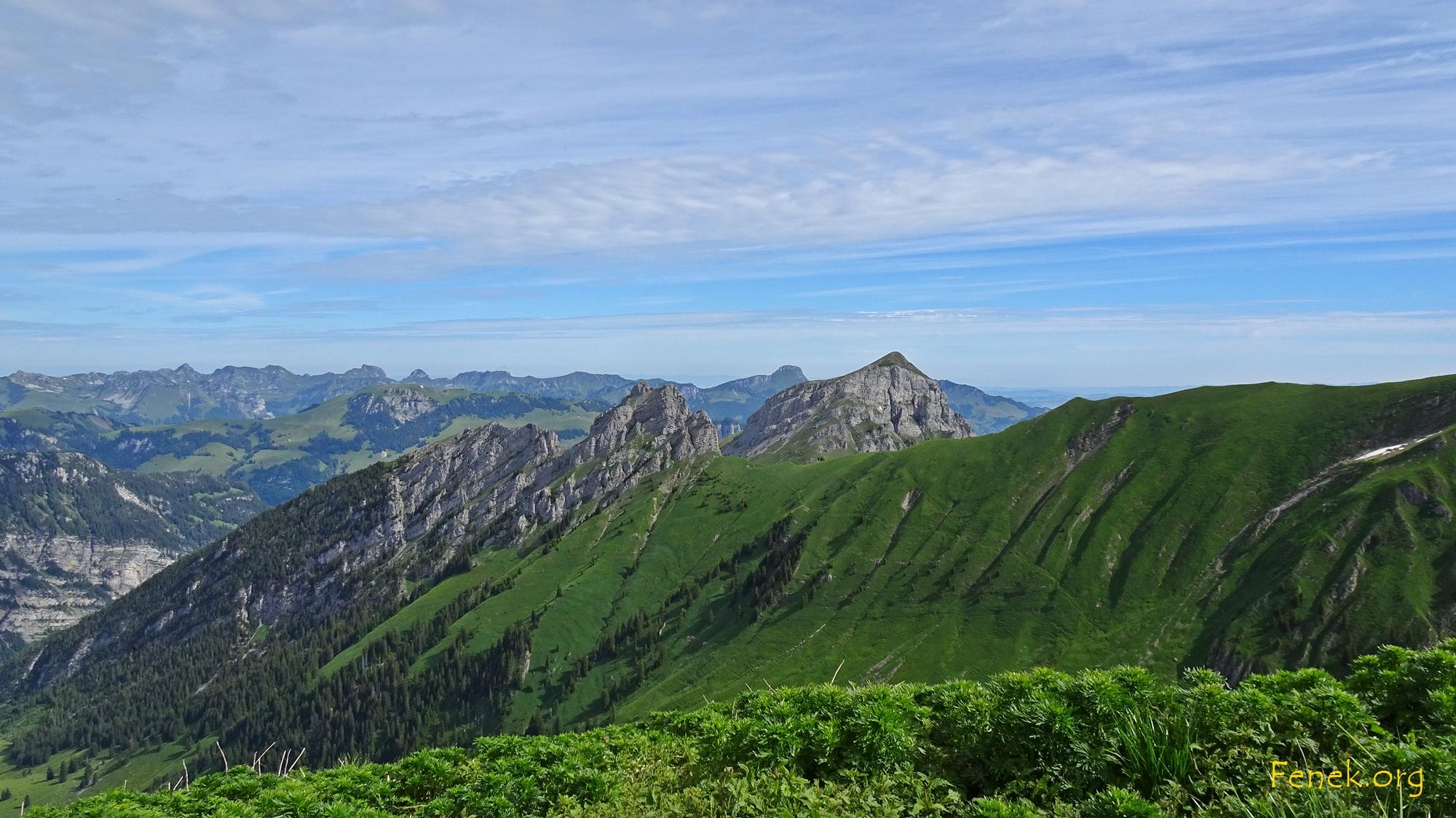 Gurbsgrat und Tierlaufhore - dann Wiriehorn - ganz hinten Stockhornkette